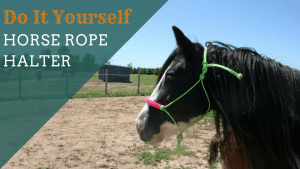 How to tie a rope halter with a Fiador knot the easy way!
